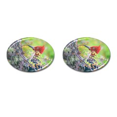 Woodpecker At Forest Pecking Tree, Patagonia, Argentina Cufflinks (Oval)