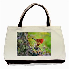 Woodpecker At Forest Pecking Tree, Patagonia, Argentina Basic Tote Bag