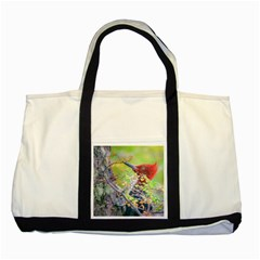 Woodpecker At Forest Pecking Tree, Patagonia, Argentina Two Tone Tote Bag
