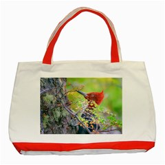 Woodpecker At Forest Pecking Tree, Patagonia, Argentina Classic Tote Bag (Red)