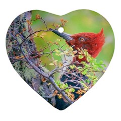 Woodpecker At Forest Pecking Tree, Patagonia, Argentina Heart Ornament (Two Sides)