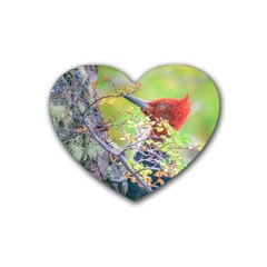 Woodpecker At Forest Pecking Tree, Patagonia, Argentina Rubber Coaster (Heart)