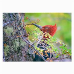 Woodpecker At Forest Pecking Tree, Patagonia, Argentina Large Glasses Cloth (2-Side)