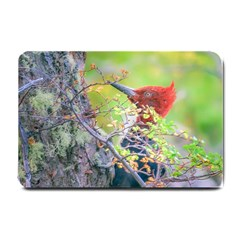 Woodpecker At Forest Pecking Tree, Patagonia, Argentina Small Doormat