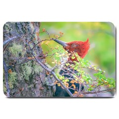 Woodpecker At Forest Pecking Tree, Patagonia, Argentina Large Doormat