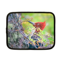 Woodpecker At Forest Pecking Tree, Patagonia, Argentina Netbook Case (Small)