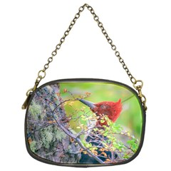 Woodpecker At Forest Pecking Tree, Patagonia, Argentina Chain Purses (Two Sides)