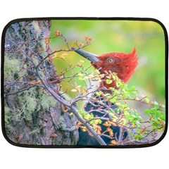 Woodpecker At Forest Pecking Tree, Patagonia, Argentina Double Sided Fleece Blanket (Mini)