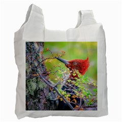 Woodpecker At Forest Pecking Tree, Patagonia, Argentina Recycle Bag (One Side)