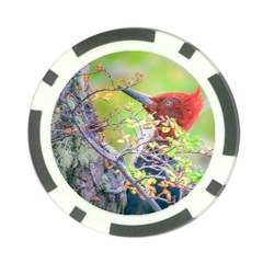 Woodpecker At Forest Pecking Tree, Patagonia, Argentina Poker Chip Card Guard (10 pack)