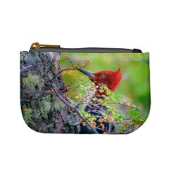 Woodpecker At Forest Pecking Tree, Patagonia, Argentina Mini Coin Purses