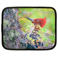 Woodpecker At Forest Pecking Tree, Patagonia, Argentina Netbook Case (XXL)
