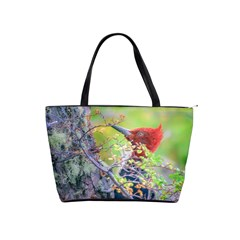 Woodpecker At Forest Pecking Tree, Patagonia, Argentina Shoulder Handbags