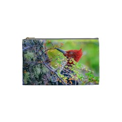 Woodpecker At Forest Pecking Tree, Patagonia, Argentina Cosmetic Bag (small)