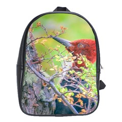 Woodpecker At Forest Pecking Tree, Patagonia, Argentina School Bags(Large)