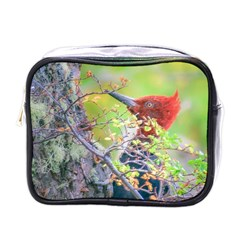 Woodpecker At Forest Pecking Tree, Patagonia, Argentina Mini Toiletries Bags