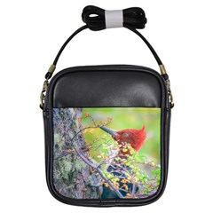 Woodpecker At Forest Pecking Tree, Patagonia, Argentina Girls Sling Bags