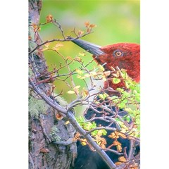 Woodpecker At Forest Pecking Tree, Patagonia, Argentina 5.5  x 8.5  Notebooks