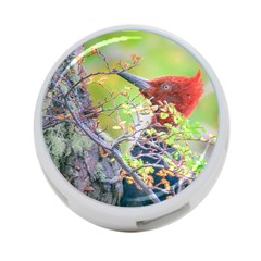 Woodpecker At Forest Pecking Tree, Patagonia, Argentina 4-Port USB Hub (One Side)