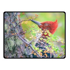 Woodpecker At Forest Pecking Tree, Patagonia, Argentina Fleece Blanket (Small)