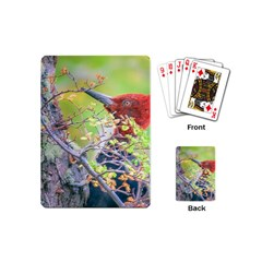 Woodpecker At Forest Pecking Tree, Patagonia, Argentina Playing Cards (Mini)