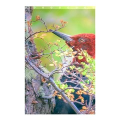 Woodpecker At Forest Pecking Tree, Patagonia, Argentina Shower Curtain 48  x 72  (Small)