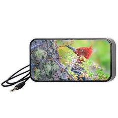 Woodpecker At Forest Pecking Tree, Patagonia, Argentina Portable Speaker (Black)