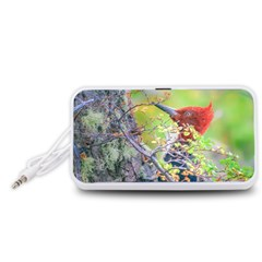 Woodpecker At Forest Pecking Tree, Patagonia, Argentina Portable Speaker (White)