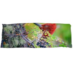 Woodpecker At Forest Pecking Tree, Patagonia, Argentina Body Pillow Case (Dakimakura)