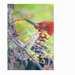 Woodpecker At Forest Pecking Tree, Patagonia, Argentina Large Garden Flag (Two Sides)