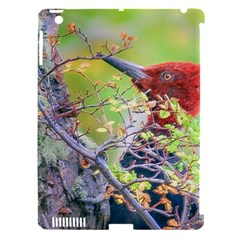 Woodpecker At Forest Pecking Tree, Patagonia, Argentina Apple iPad 3/4 Hardshell Case (Compatible with Smart Cover)