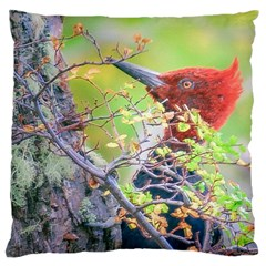 Woodpecker At Forest Pecking Tree, Patagonia, Argentina Large Cushion Case (Two Sides)