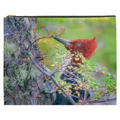 Woodpecker At Forest Pecking Tree, Patagonia, Argentina Cosmetic Bag (XXXL)
