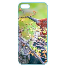 Woodpecker At Forest Pecking Tree, Patagonia, Argentina Apple Seamless iPhone 5 Case (Color)