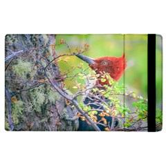 Woodpecker At Forest Pecking Tree, Patagonia, Argentina Apple iPad 2 Flip Case