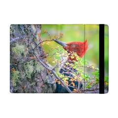 Woodpecker At Forest Pecking Tree, Patagonia, Argentina Apple iPad Mini Flip Case