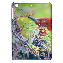 Woodpecker At Forest Pecking Tree, Patagonia, Argentina Apple iPad Mini Hardshell Case