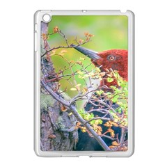 Woodpecker At Forest Pecking Tree, Patagonia, Argentina Apple iPad Mini Case (White)