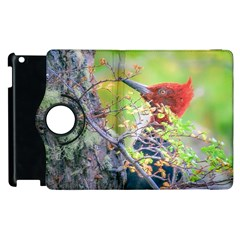 Woodpecker At Forest Pecking Tree, Patagonia, Argentina Apple iPad 2 Flip 360 Case