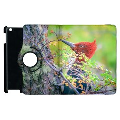 Woodpecker At Forest Pecking Tree, Patagonia, Argentina Apple iPad 3/4 Flip 360 Case