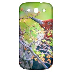 Woodpecker At Forest Pecking Tree, Patagonia, Argentina Samsung Galaxy S3 S III Classic Hardshell Back Case