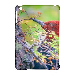 Woodpecker At Forest Pecking Tree, Patagonia, Argentina Apple iPad Mini Hardshell Case (Compatible with Smart Cover)