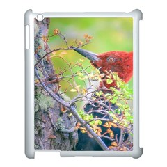 Woodpecker At Forest Pecking Tree, Patagonia, Argentina Apple iPad 3/4 Case (White)