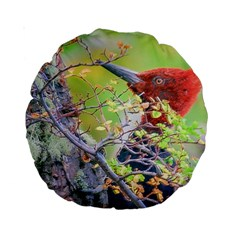 Woodpecker At Forest Pecking Tree, Patagonia, Argentina Standard 15  Premium Round Cushions
