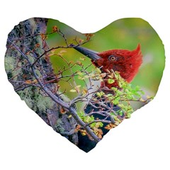 Woodpecker At Forest Pecking Tree, Patagonia, Argentina Large 19  Premium Heart Shape Cushions