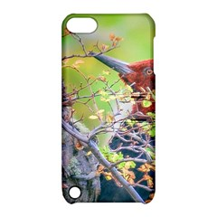 Woodpecker At Forest Pecking Tree, Patagonia, Argentina Apple iPod Touch 5 Hardshell Case with Stand