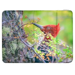 Woodpecker At Forest Pecking Tree, Patagonia, Argentina Samsung Galaxy Tab 7  P1000 Flip Case
