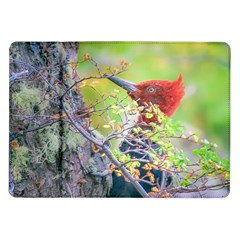 Woodpecker At Forest Pecking Tree, Patagonia, Argentina Samsung Galaxy Tab 10.1  P7500 Flip Case