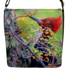 Woodpecker At Forest Pecking Tree, Patagonia, Argentina Flap Messenger Bag (S)