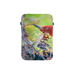 Woodpecker At Forest Pecking Tree, Patagonia, Argentina Apple iPad Mini Protective Soft Cases